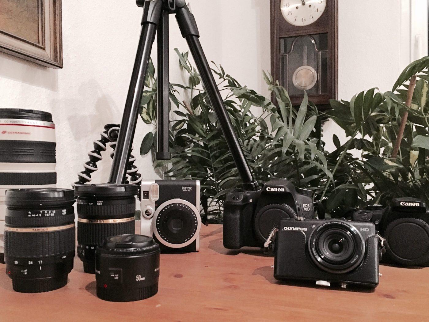 Kamera für Natur und Tieraufnahmen: Meine Ausrüstung