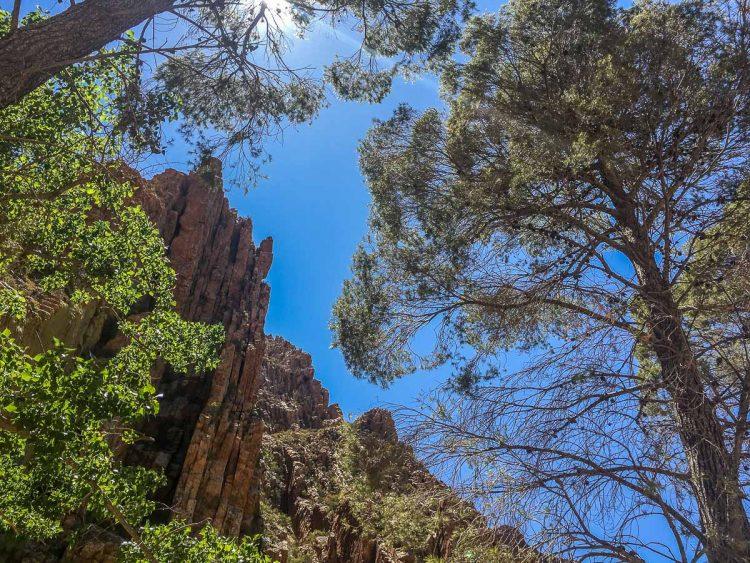 Western Cape – Zwischen Weinbergen und Wüste