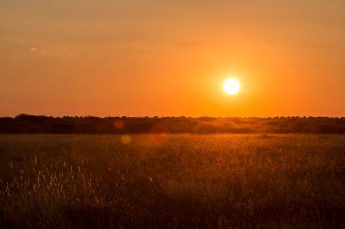 Sonnenuntergang in der Zentralkalahari