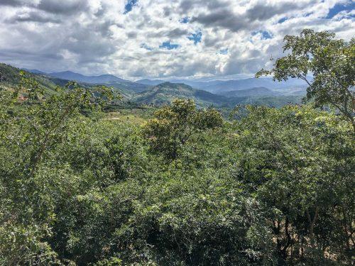 Ausblick auf das Nyika Plateau in Malawi