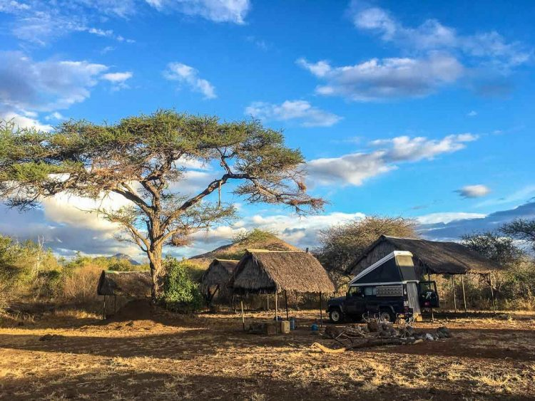 Auf Safari im Tsavo West